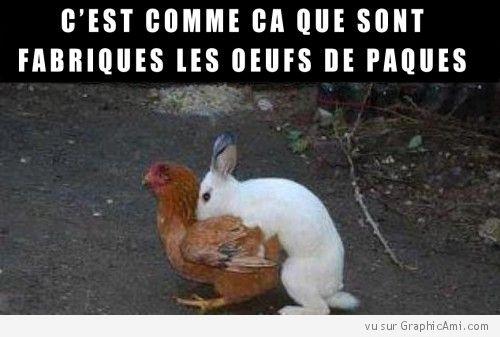 Et c'est comme ça que sont Fabriqués les Oeufs de Pâques