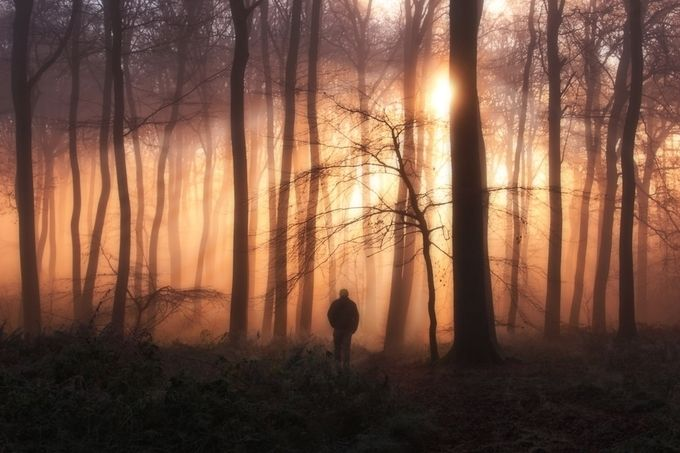 Stand Alone Photo Contest Finalists - ViewBug Blog
