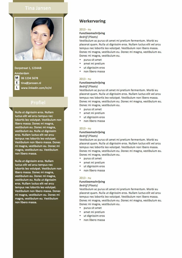 CV sjabloon MS Word