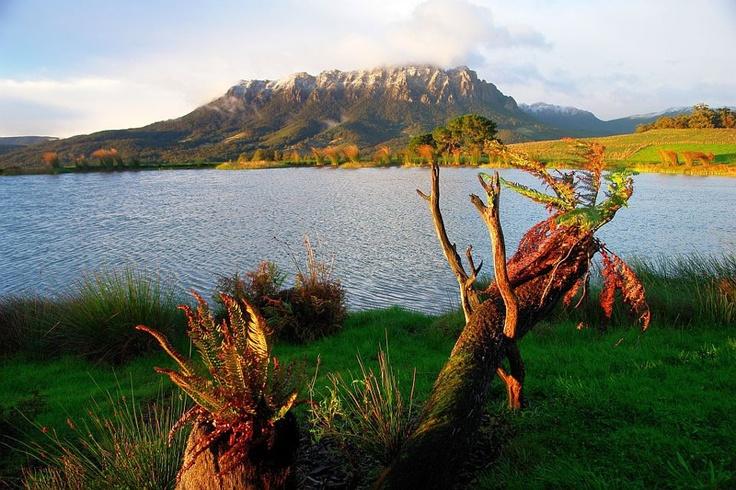 Autumn morning near Mount Roland, courtesy Tasmania Photos on Facebook