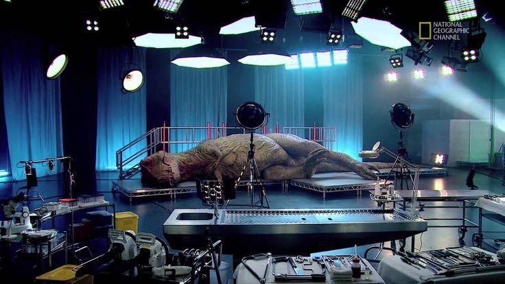 Autopsie d'un T.Rex