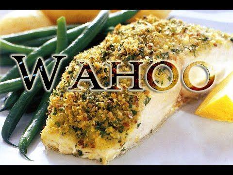 The Best fish I've ever had!!!! Tasty Tuesday 25: Wahoo - YouTube
