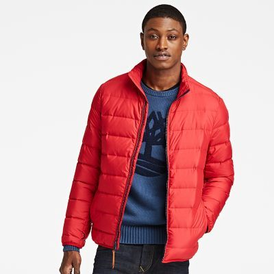 Timberland Men's Bear Head Down Jacket Chili Pepper