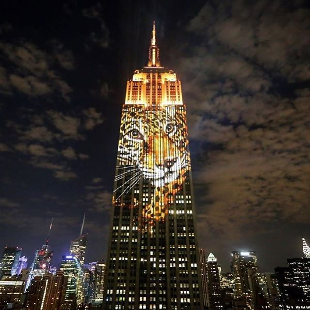 Racing Extinction-Empire State Building-Projection-NYC-Travis Threlkel-Louie Psihoyos-009