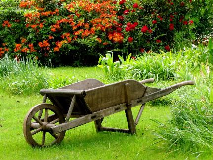 Wooden wheelbarrow, Monet's Garden, France