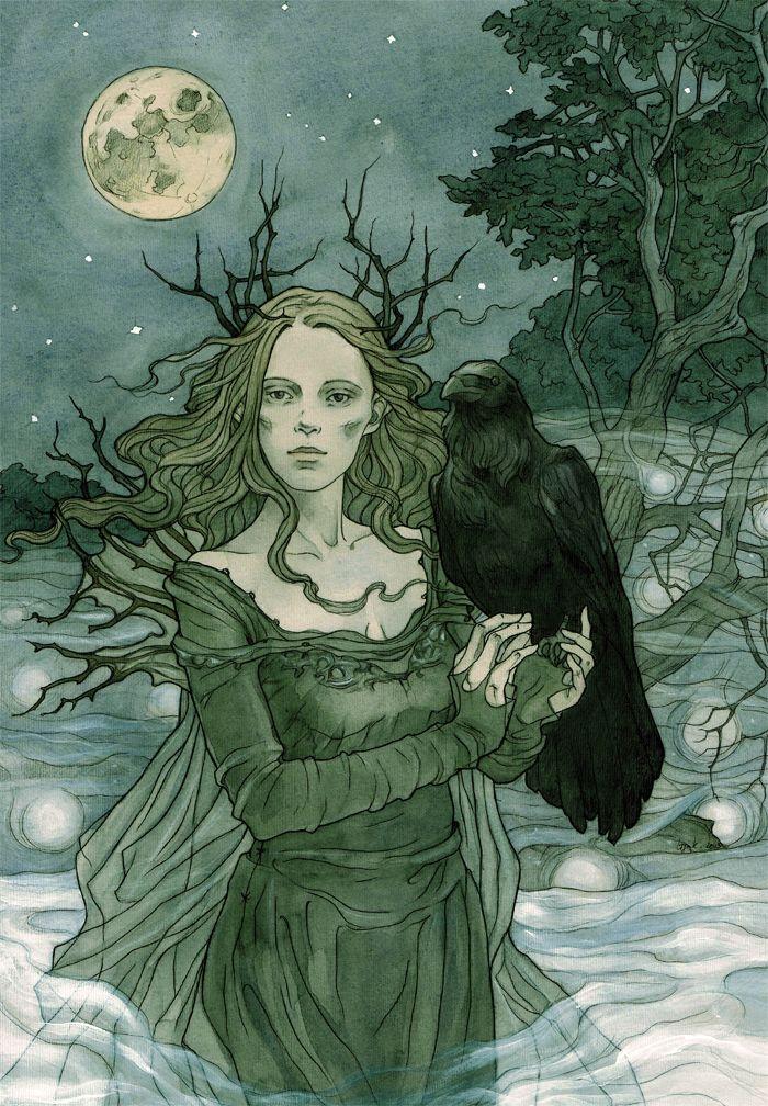 http://fc03.deviantart.net/fs71/f/2013/312/8/5/faerie_night_by_liga_marta-d6n1l4d.jpg