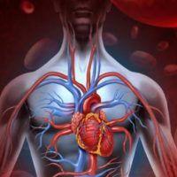 ΕΚΠΛΗΚΤΙΚΟ! Καθαρίστε αρτηρίες, καρδιά και νεφρά σε 72 ώρες με φυσικό τρόπο