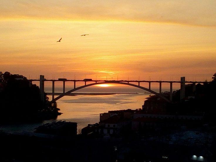 Vistas de Massarelos para a ponte da Arrábida, pôr do sol.