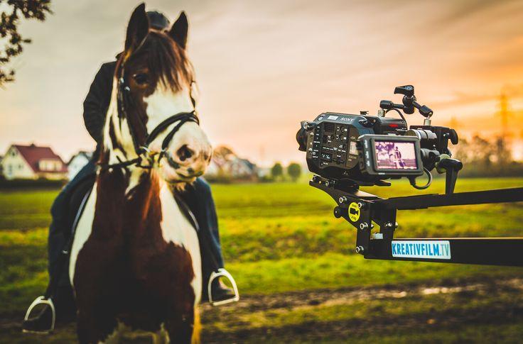 "Shooting for Amazon`s latest book ""Diagnose: Pferdefieber!: Casey"" (c) Kreativfilm.tv"