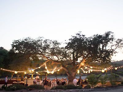 Cass Winery And Vineyard Paso Robles Central Coast Wine Country Wedding Location 93446