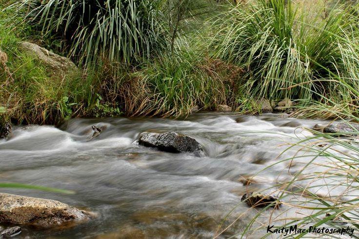 RUNNING RIVERS || Condamine River Road, Killarney, QLD
