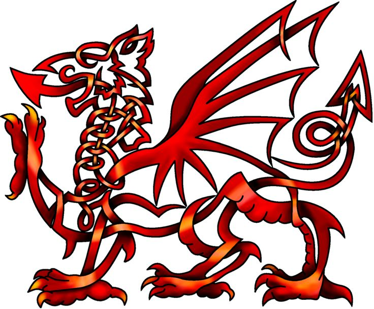 Celtic Knot Welsh Dragon - Like the lines but with watercolor and not this style dragon...