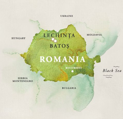 #Wine #Romania #Transylvania