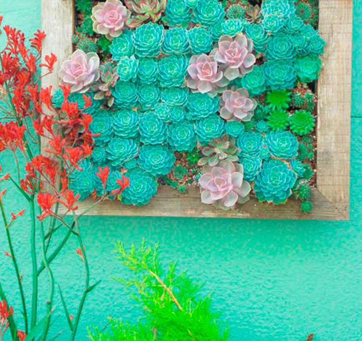 Make a DIY hanging succulent garden. It's perfect indoor or outdoor gardens, or even at a wedding!