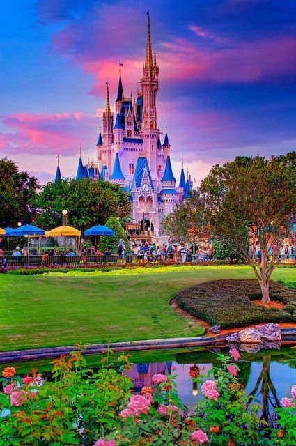 Disney World <3 that's a beautiful pic