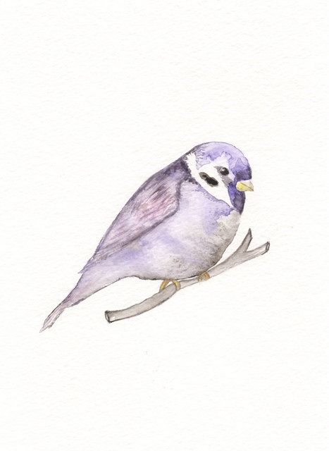 Purple Sparrow/5x7 Watercolor Print by kellybermudez on Etsy