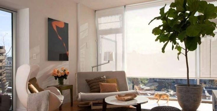Feng Shui Wohnzimmer Einrichten Couch Klein Egg Pflanze Couchtisch Deko Hell Fenster