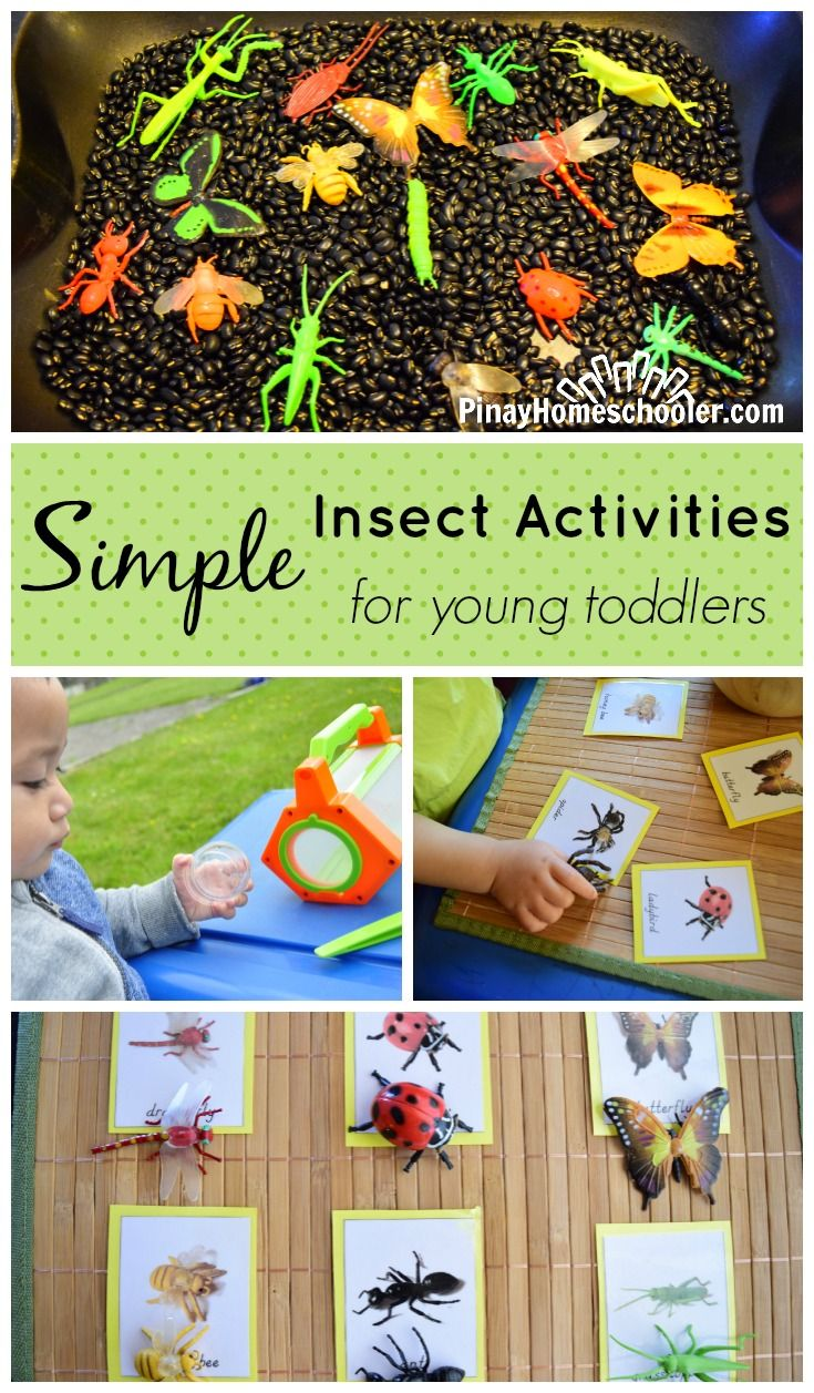 Insect Activities for little toddlers