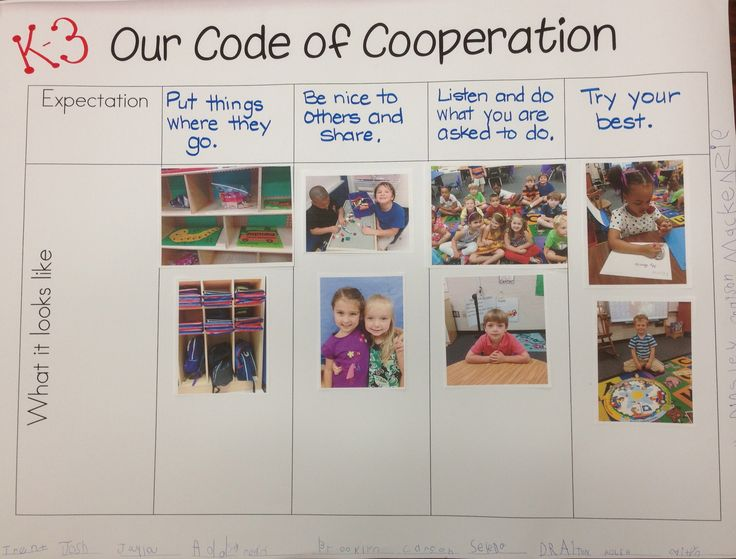 Creating a Code of Cooperation