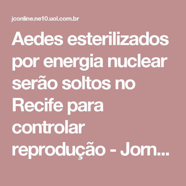 Aedes esterilizados por energia nuclear serão soltos no Recife para controlar reprodução  - Jornal do Commercio