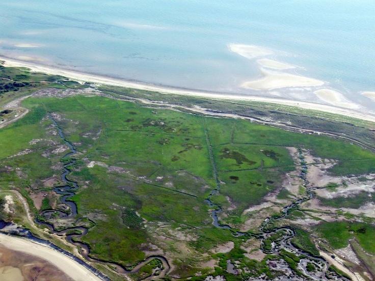 Cape Cod Salt Marsh