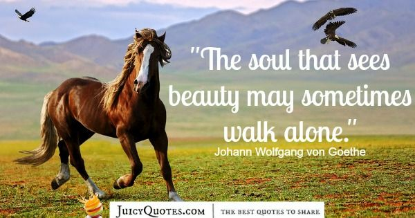 Quote About Beauty - Johann Wolfgang von Goethe