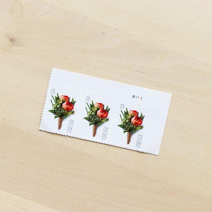 Rose Flower Forever Postage Stamp Postage stamps, Stamp