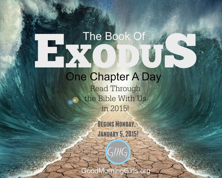 I loved our time together in Genesis this fall – so the natural progression is to keep going into the book of Exodus. We will be in the book of Exodus this January and February, then on March 2nd, we will begin the Gospel of Matthew –which will take us up to the week of Easter.
