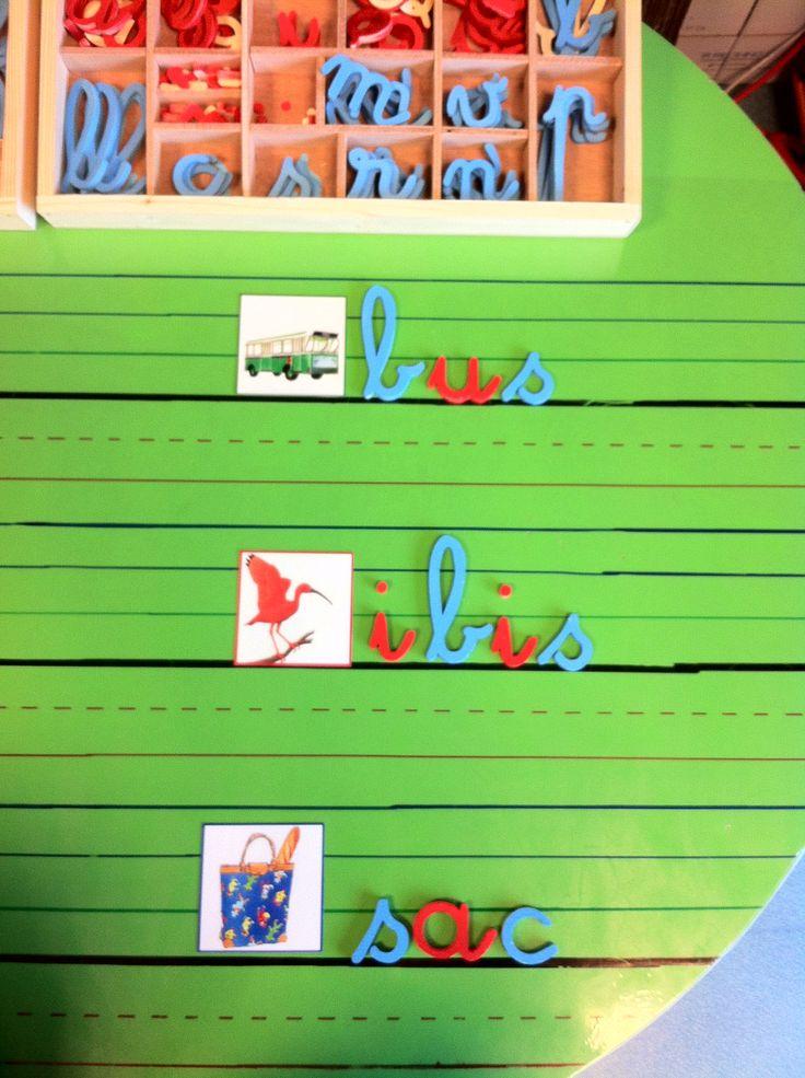 Lignes tracées sur feuille plastique autocollante pour travailler les dictées muettes avec alphabet mobile.