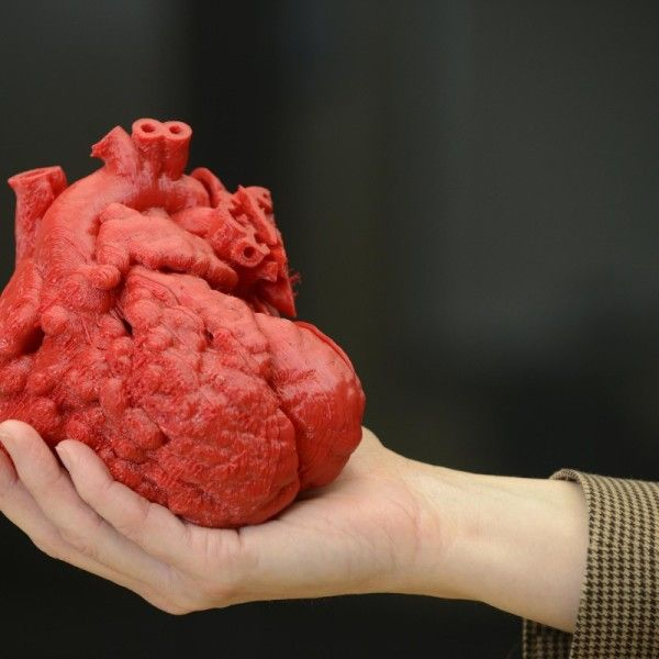 in the future, there is a possibility that 3D printers will be used for organs, and could save millions of lives. #3dprinters#INTERESTING #COOL