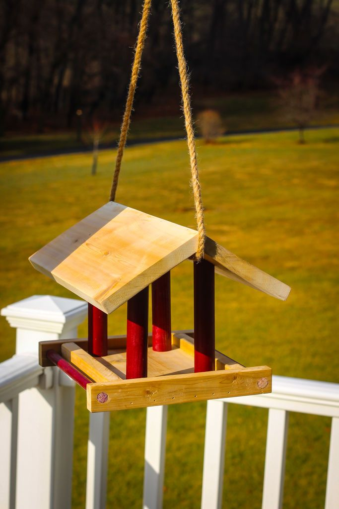 Make all the birds happy with a simple bird feeder!