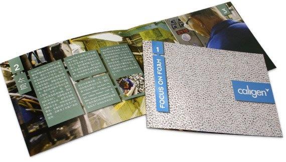 Caligen company folder Chinese version
