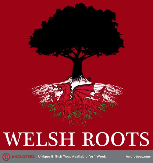 My ancestors left by 1624 ( Owen/Vaughan), however if the Davis family was from Wales, sometime before 1790. My surnames in Wales: Owen, Vaughan,Puleston, Pughe,Wynn, Morgan, Richard, Llwyd, Nannau, probably Davis. My husband's surnames: Thomas, Pritchard, Llewellyn (Lewellen), Humphrey