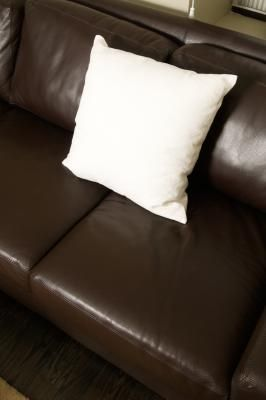 How to Get Pet Odor Out of Leather Furniture.  Gonna have to try this, our dog has practically ruined our couch.