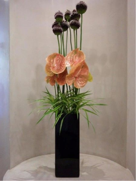 Anthurium Flowers. Anthurium Arrangements at London Florist