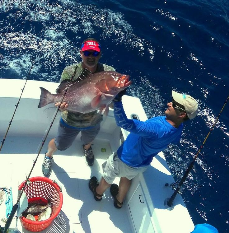 Captain Scott Garris has been running charters and commercial fishing on the Crystal Coast for over 20 years. Join hime to catch Spanish, King Mackerel, Snapper, Grouper, Sea Bass, Wahoo, Dolphin, Bill Fish & Tuna! 🎣  Critter Gitter Fishing Charter.