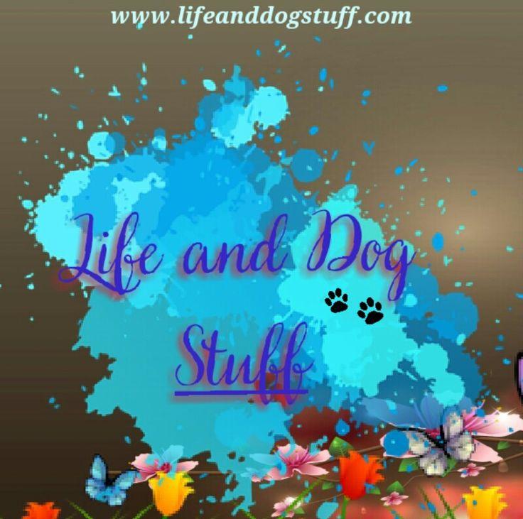 My Pinterest blog cover.
