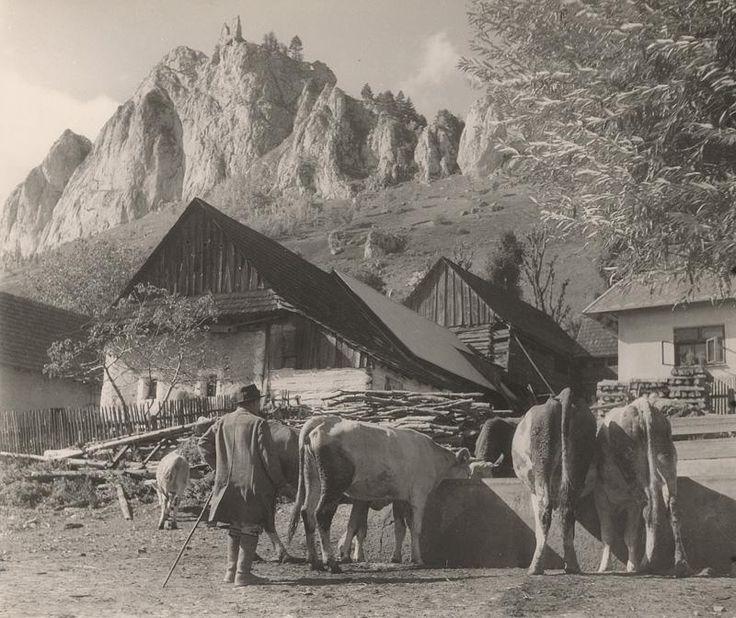 Ján Halaša Pri napájadle. Vršatecké Podhradie 1937
