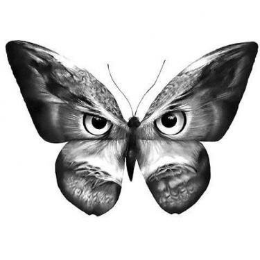 Black Butterfly Owl Tattoo Design