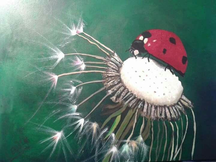 Ladybird series