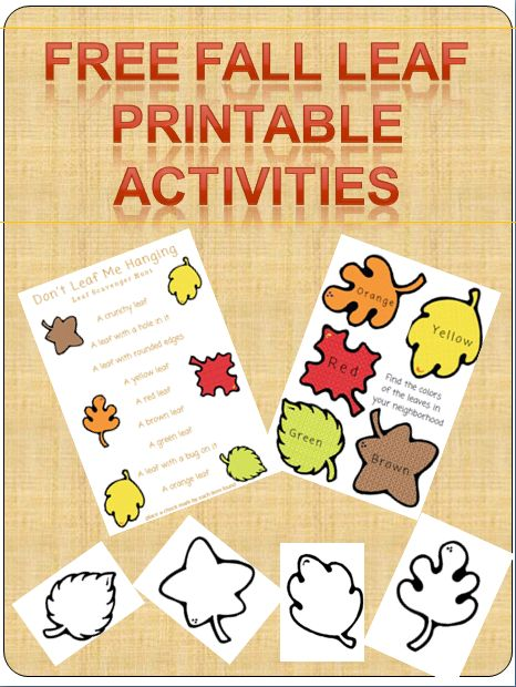 FREE Fall Leaf Printable Activities book for kids! Leaf Coloring pages, nature scavenger hunt and more!