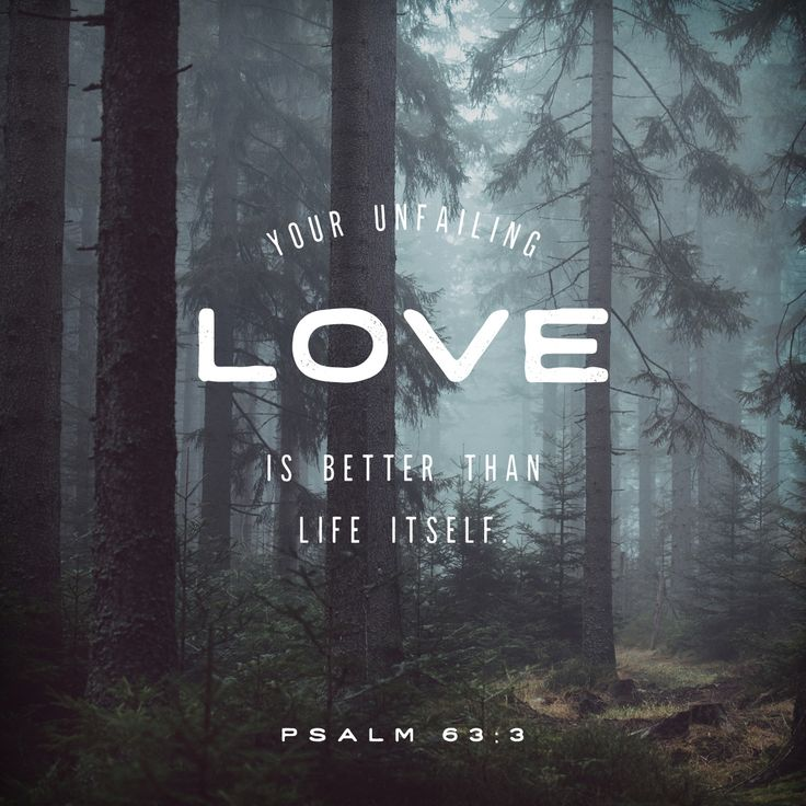 Your unfailing love is better than life itself; how I praise you! I will praise you as long as I live, lifting up my hands to you in prayer.