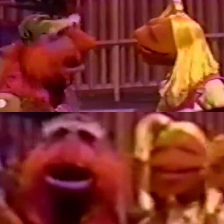 410 Best Muppet Love Images On Pinterest: 17+ Images About Muppet Stuff On Pinterest