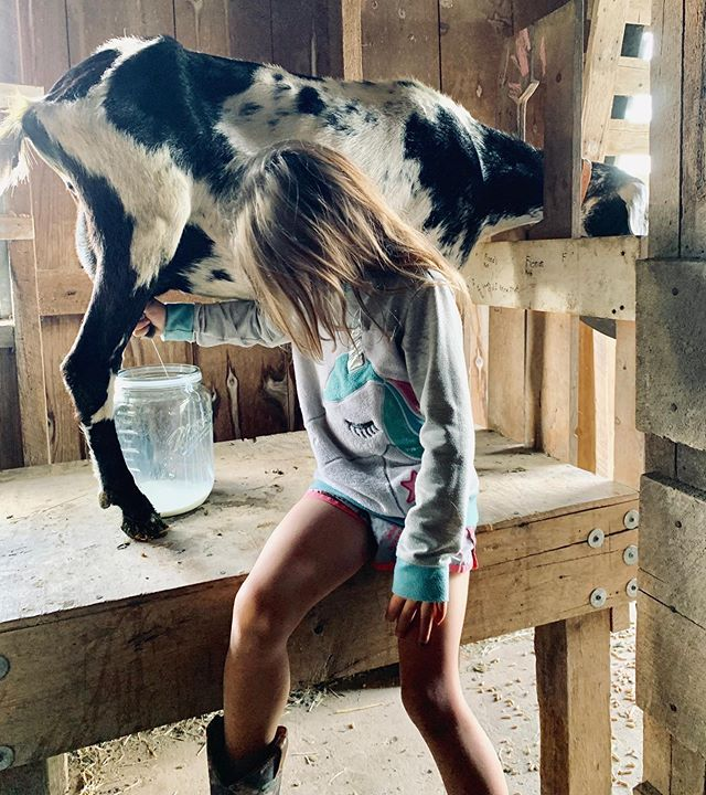 Pin on HH | Our Farm Animals