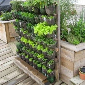 Plastic vertical vegetable garden 300 300 for Huerto vertical casero