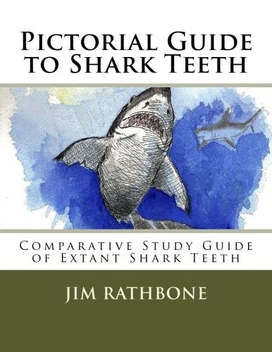 Dental Anatomy - Tooth Id Quiz Flashcards - cram.com