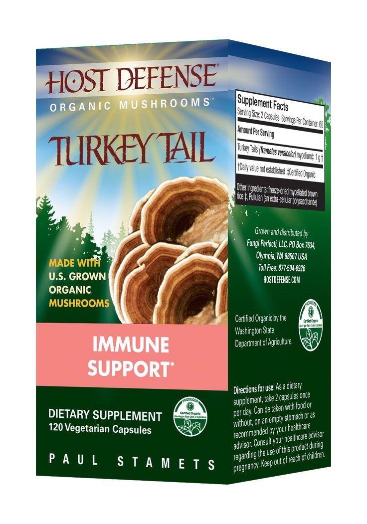 turkey tail mushroom identification - said to help against breast cancer