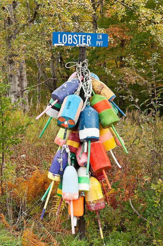 Lobster buoys, Owls Head, Maine