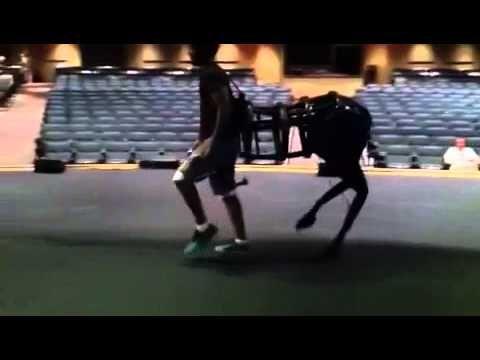 Centaur costume - YouTube