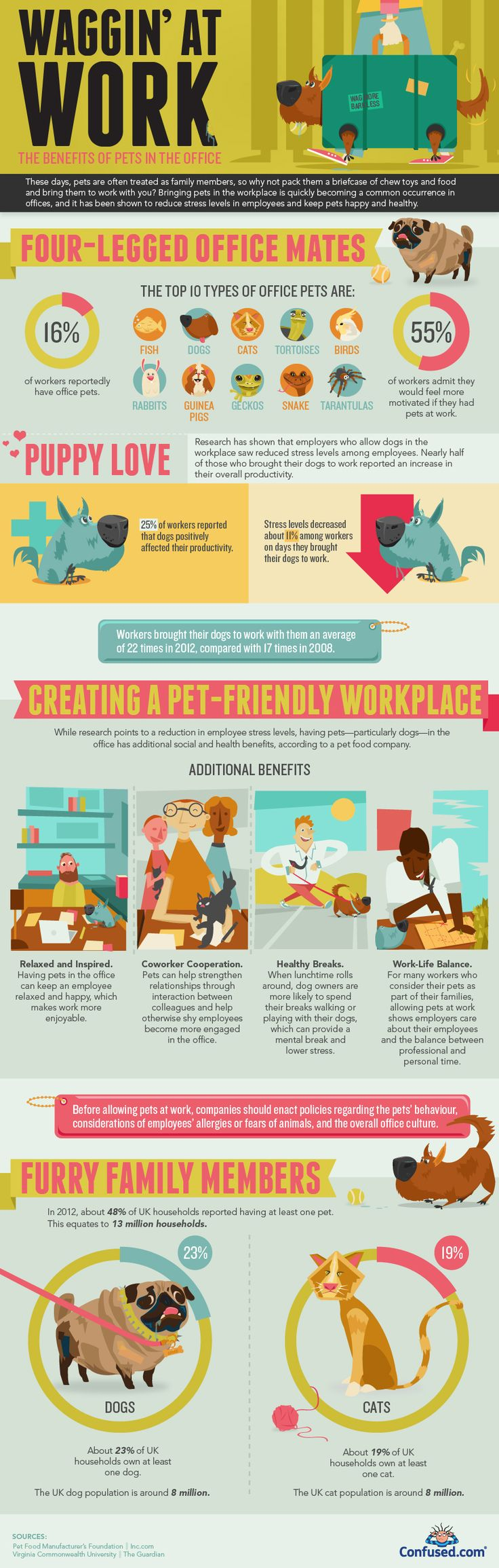 Pets in the workplace infographic